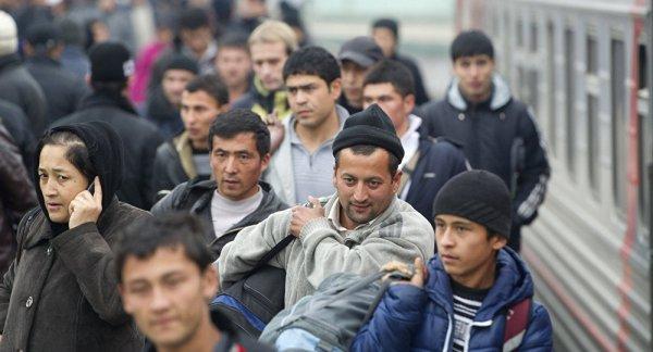 Что ищут таджики в стране далекой?